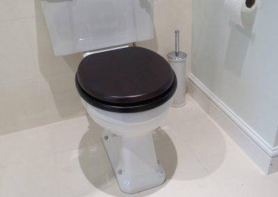 Modern Toilet with Dark Seat