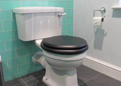 Traditional Toilet with Dark Toilet Seat
